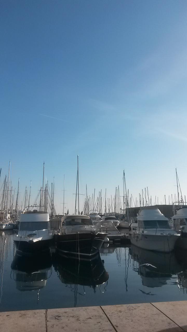 Le port de Cannes à deux pas du Palais des Festivals