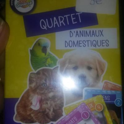 Quartet animaux domestiques1