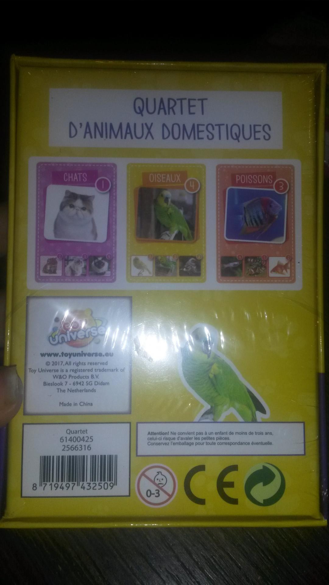Quartet animaux domestiques2